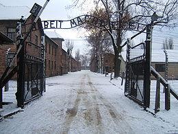 AUSCHWITZ, i settanta anni della liberazione del campo