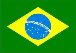 """La foresta amazzonica: """"polmone verde della Terra"""" da salvare"""